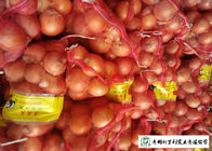 Matured Fresh Onions , Healthy Chinese Onion Outside Color Yellow / Red